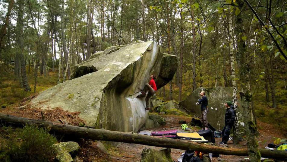 Nils Favre à Fontainebleau